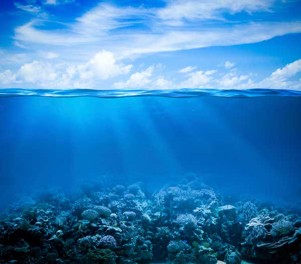 Okyanuslar Hakkında Bilgi